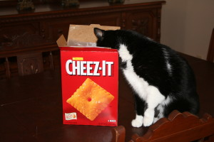 Cheez-It Photos