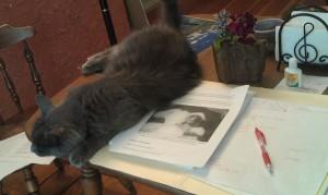 My editor's cat guiding her through the process. www.askjanis.com.